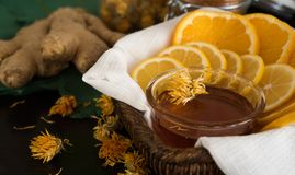 Honing, citrusvruchten en gember Royalty-vrije Stock Foto
