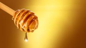 Honing die van honingsdipper druipen die op geel wordt geïsoleerd royalty-vrije stock afbeeldingen