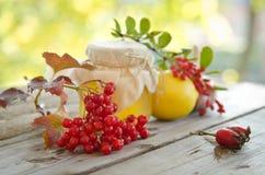 Honing en anderen natuurlijke geneeskunde voor de winterverwarmingspijp royalty-vrije stock afbeelding