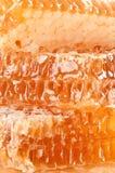 Honing en Honingraat Royalty-vrije Stock Afbeelding