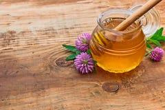 Honing en klaverbloemen Royalty-vrije Stock Afbeelding