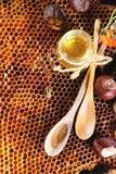 Honing en noten Stock Afbeelding