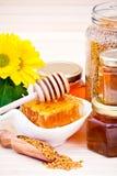 Honing en stuifmeel Royalty-vrije Stock Foto's