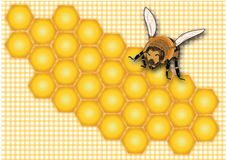 Honing, honingraat, honingsetiket, het etiket van de honingskruik, de zomer, insect, gele bij, snoepje, honingsachtergrond, stock illustratie