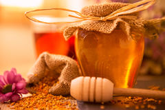 Honing, honingraat, stuifmeel en propolis stock fotografie