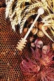 Honing, noten en de herfstbladeren Stock Fotografie