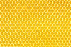 Honing op honingraatachtergrond Stock Afbeelding
