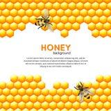 Honingbijachtergrond Stock Foto's