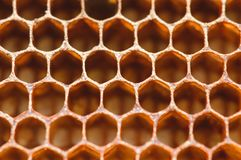 Honingraat dichte omhooggaande macroachtergrond stock afbeeldingen