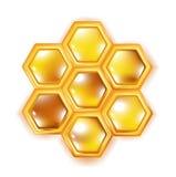 Honingraat die op wit wordt geïsoleerdd Royalty-vrije Stock Foto's
