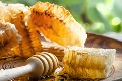 Honingraat en honing op plaat Stock Foto's