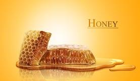Honingraat en zoete zuivere honing royalty-vrije illustratie