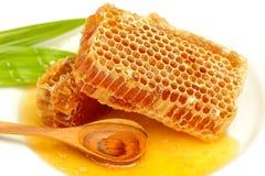 honingraat met honing op het wit Royalty-vrije Stock Afbeeldingen