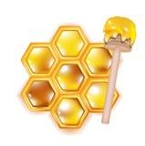Honingraat met houten dipper Stock Foto