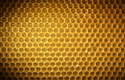 Honingraatachtergrond zonder honing Stock Fotografie