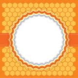 Honingraatkader Vector illustratie Stock Afbeelding