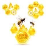 Honingraten en bijen Royalty-vrije Stock Afbeeldingen