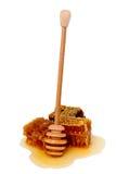 Honingraten en honingsdipper Royalty-vrije Stock Foto's