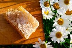 Honingraten met honing Royalty-vrije Stock Afbeelding