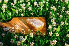 Honingraten met honing Stock Fotografie