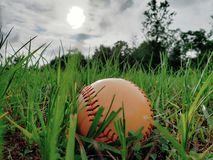 Honkbal in de yard stock fotografie