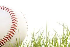 Honkbal in het gras Stock Foto's