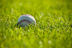 Honkbal op Gras royalty-vrije stock foto