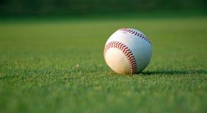 Honkbal op het gebied Stock Fotografie