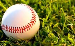 Honkbal in Outfield Royalty-vrije Stock Afbeeldingen