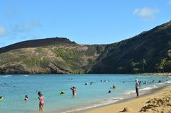 Honolulu Beach With Large Reefs Full Of Precious Fish. stock images