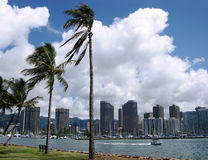 Honolulu Downtown Royalty Free Stock Images