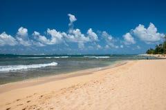 HONOLULU USA - AUGUSTI, 14 2014 - folk som har gyckel på den hawaii stranden Arkivbild