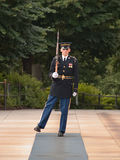 Honor Guard at Arlington Cemetery Royalty Free Stock Images
