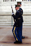 Honor Guard Arlington Royalty Free Stock Image