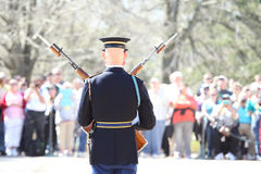 Honor Guards Stock Image
