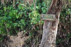 Honu-Parkzeichen auf Schildkröten-Strand im Nordufer, Oahu, Hawaii Lizenzfreie Stockfotos