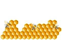 honung royaltyfri illustrationer
