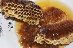 Honung från honungskakan Arkivbild