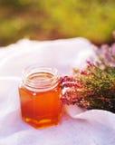 Honung i en glass krus med melliferous örter för blommor Royaltyfri Bild