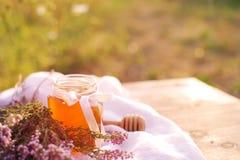 Honung i en glass krus med melliferous örter för blommor Royaltyfria Foton
