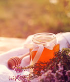 Honung i en glass krus med melliferous örter för blommor Arkivbilder