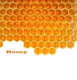 Honung i hårkam Royaltyfri Foto