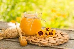 Honung i krus med honungskopan på träbakgrund Royaltyfri Foto