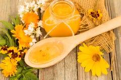 Honung i krus med honungskopan på träbakgrund Fotografering för Bildbyråer