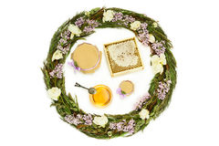 Honung och örtsammansättning på vit bakgrund Fotografering för Bildbyråer