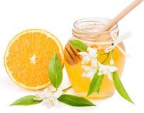 Honung och apelsin Arkivfoton
