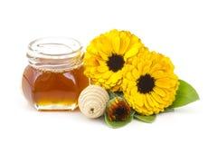 Honung- och calendulablommor Royaltyfria Bilder