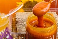 Honung och pollen Arkivfoto