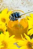 Honung och solrosor royaltyfri bild
