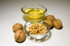 Honung och valnötter Arkivfoto